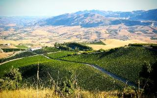Trekking di San Martino e Cantine Aperte