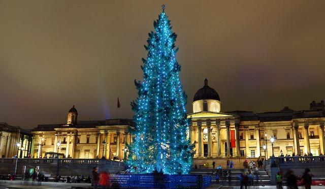 L'albero di Natale a Trafalgar Square, a Londra, è un dono della Norvegia all'Inghilterra