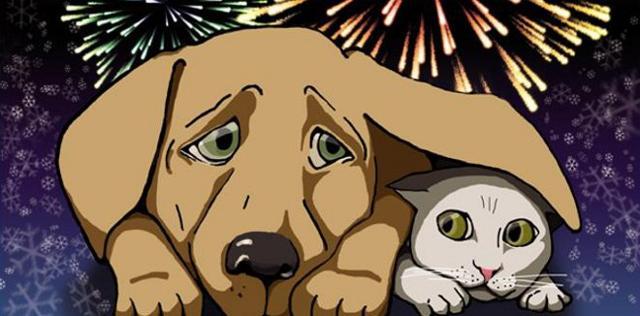 Gli esperti consigliano di preparare l'animale all'esposizione ai forti rumori, contenendolo al guinzaglio se si tratta di un cane, senza consolarlo, con assoluta indifferenza...