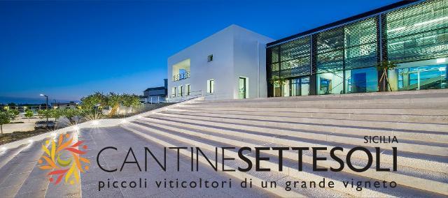 Cantine Settesoli celebra il 60° anniversario all'insegna della solidarietà