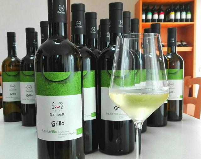 L'Aquilae Grillo Bio di CVA Canicattì ha toccato quota 30.000 bottiglie