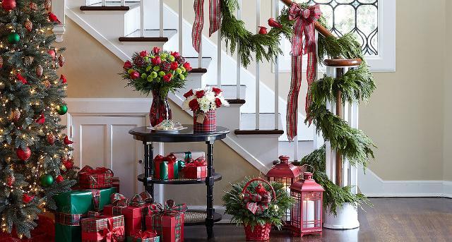 Stelle di Natale, rami di vischio, agrifoglio o di pino e le pigne...