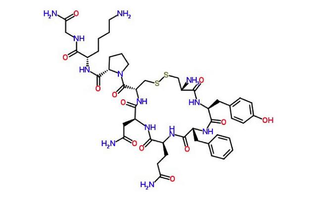 La vasopressina - o ormone antidiuretico (ADH) - esercita la propria azione sui reni, facilitando il riassorbimento dell'acqua da parte dell'organismo.