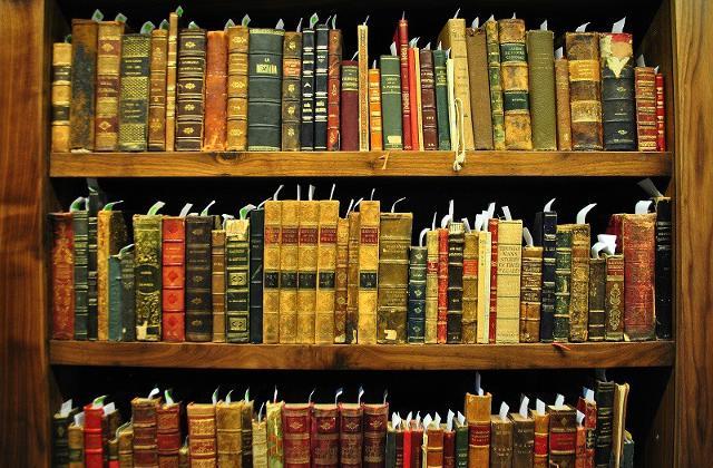 La Biblioteca Linciniana custodisce anche pergamene dei sec. XIV-XVII...
