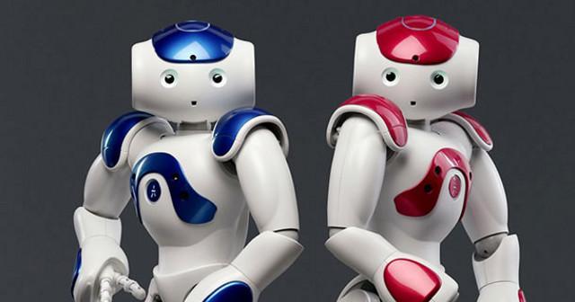 Due versioni di Nao, il robot della Behaviour Labs
