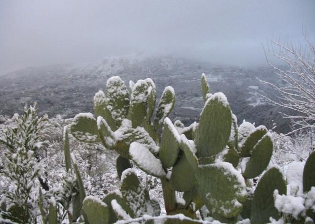 Nevicate altamente probabili anche in Sicilia, dove sono attesi fiocchi di neve entro giorno 5 anche tra Messina e Palermo