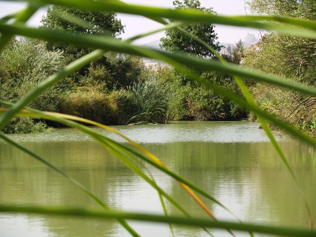 Un tratto del fiume San Leonardo - ph www.partecipiamo.it