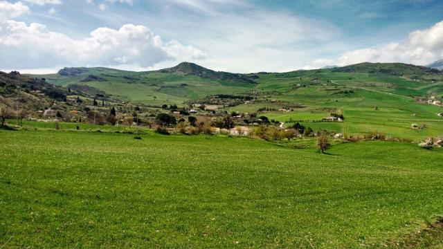 Panorama agrario Madonita