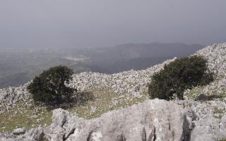 Pizzo Dipilo, Merletti di roccia sulle Madonie