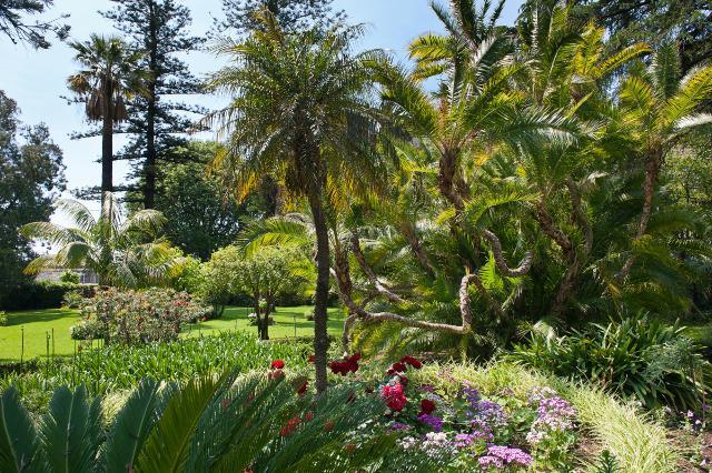 Il giardino di Villa Pennisi ad Acireale