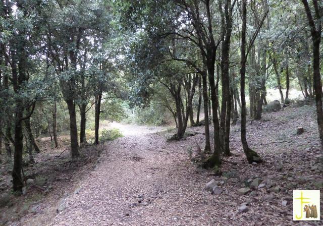 Sentiero che da Gibilmanna porta verso Cefalù
