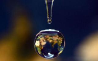 Federconsumatori Sicilia partecipa alla Giornata Mondiale dell'Acqua