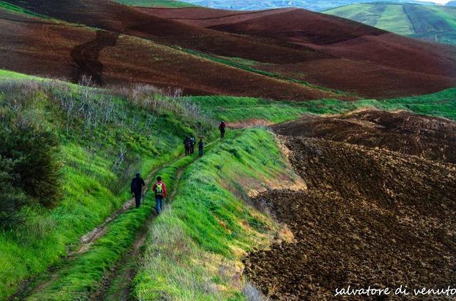 Un tratto del Cammino dei Santuari Madoniti in una foto di Salvatore Di Venuto