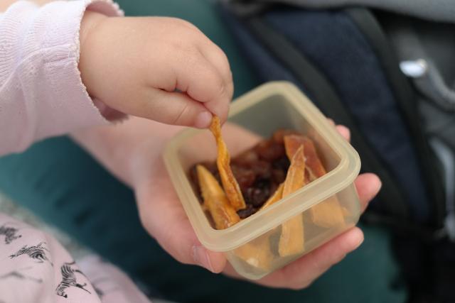 n più, ricordate di mettere in borsa qualcosa da mangiare o stuzzicare