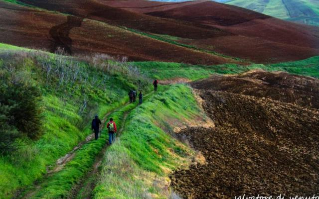 Cammino dei Santuari Madoniti