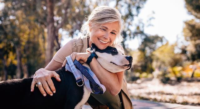 Il possesso responsabile di un animale di compagnia si articola in due fasi: l'acquisizione responsabile e la proprietà responsabile