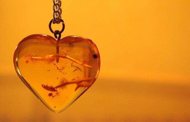 Un cuore d'Ambra