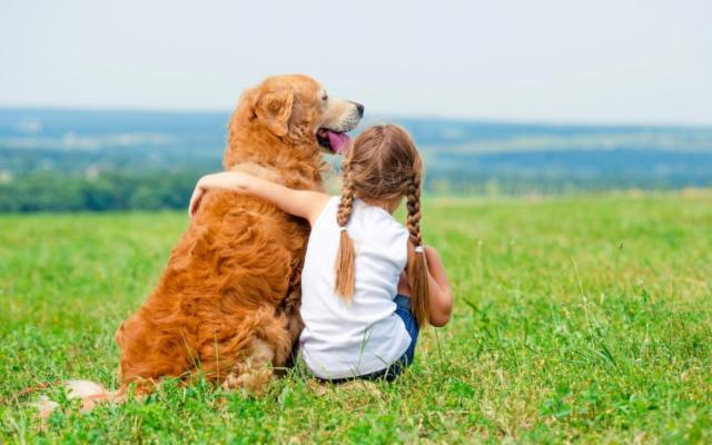 Vivere con un pet: tanto amore e tanta responsabilità