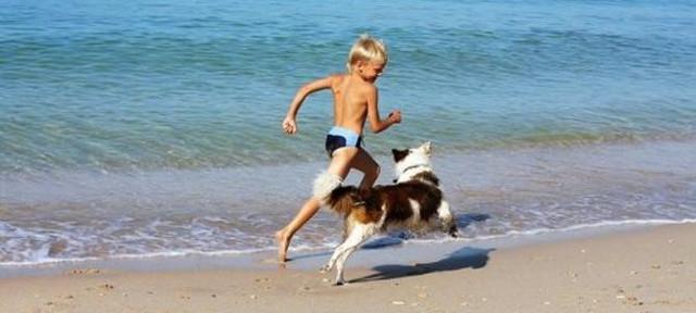 In caso di multa, scrivere sempre sul verbale le motivazioni che vi hanno indotto a rimanere in spiaggia...