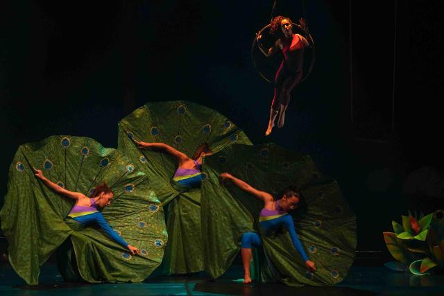 """''Viaggio straordinario"""" è il nuovo spettacolo del Circ'Opificio di Palermo"""