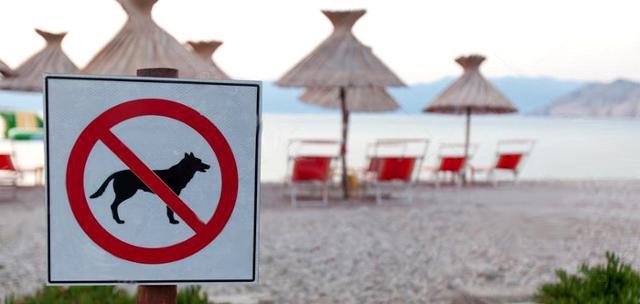 I cani, accompagnati dal padrone, non possono essere cacciati da una spiaggia pubblica, o dalla battigia, in assenza di divieti chiaramente esposti e pubblicizzati regolarmente.
