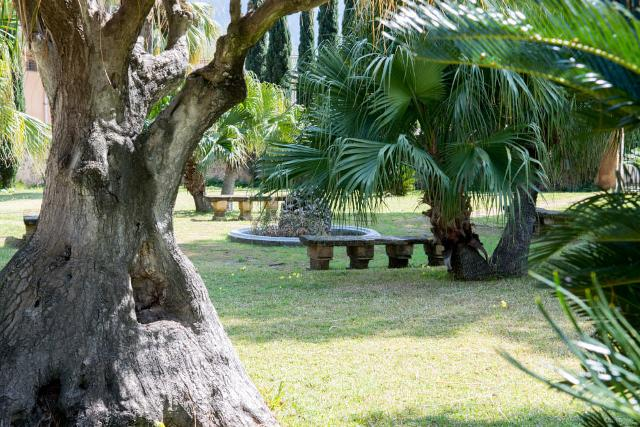 Il parco di Villa Riso, Palermo