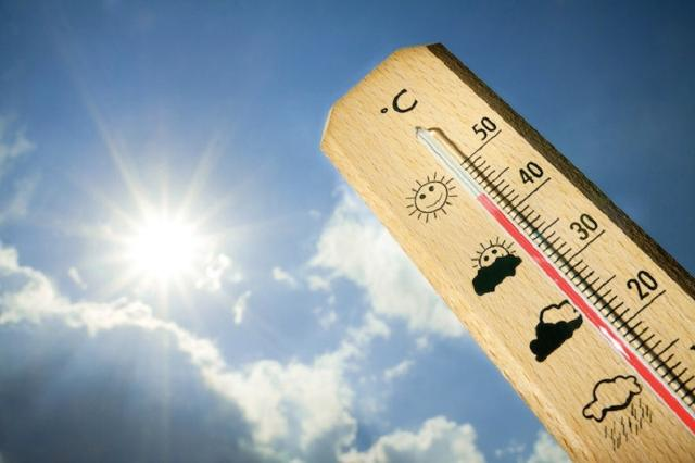 L'estate è arrivata e caldo, afa e umidità sono fattori che possono mettere a dura prova corpo, umore e cervello...
