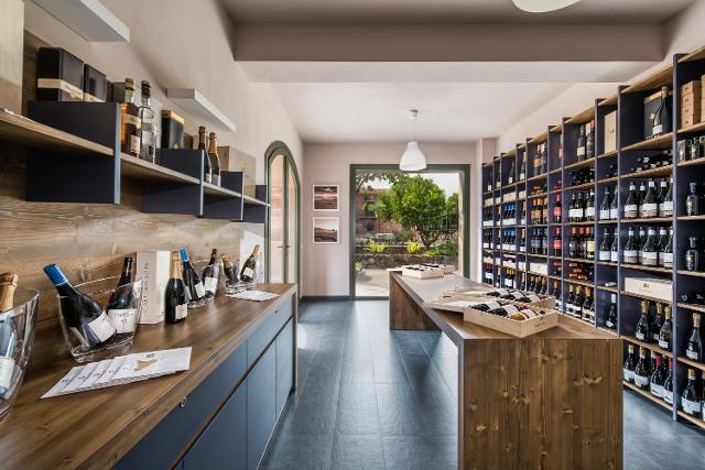 Bistrot & Wine Experience di Tenuta Cavanera