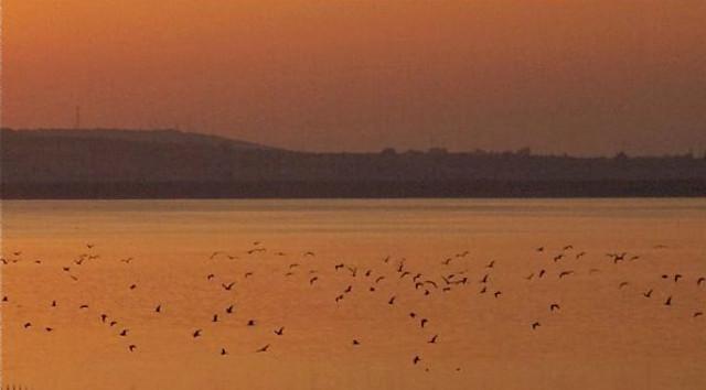 Lago del Biviere al tramonto