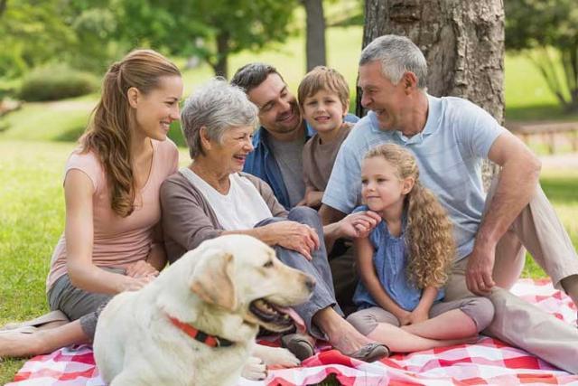 Ma che cosa rende, in generale, tanto importante il ruolo dei nonni per figli e nipoti?