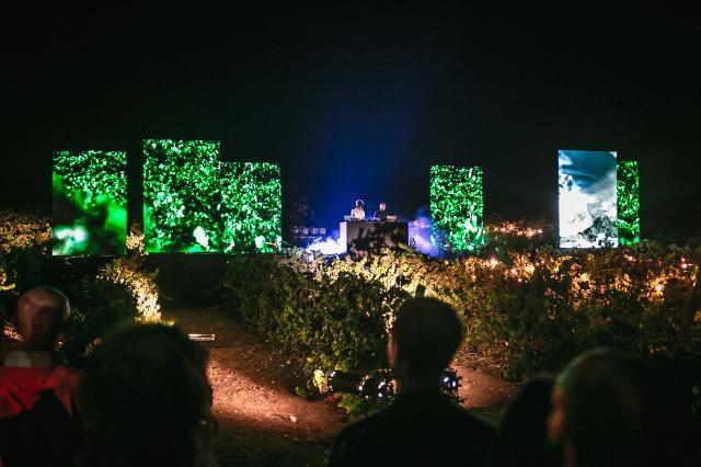 Performance audiovisiva sulla vendemmia notturna delle Orchestre Invisibili - ph Paolo Castronovo