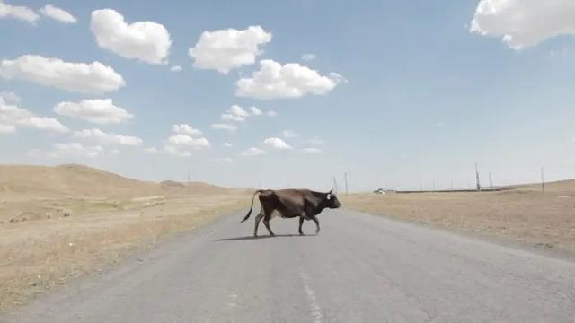 Diario da un viaggio di studio in Kazakistan e Uzbekistan - FBSR
