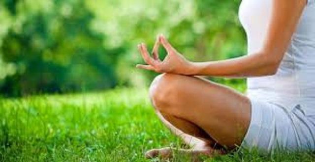 yoga-nel-bosco