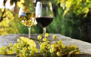 Calici nel Bosco - Degustazione guidata di vini locali