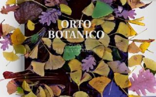 Orto Botanico di Palermo. Guida per il Visitatore