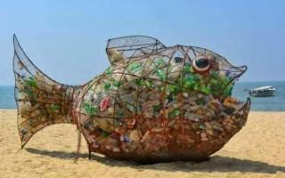 Sulle spiagge siciliane arrivano i ''pesci mangiaplastica''