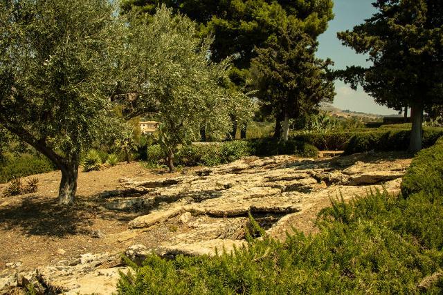 I resti di una necropoli paleocristiana all'interno del giardino di Villa Aurea