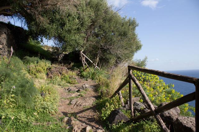 Un tratto del sentiero Acquegrandi