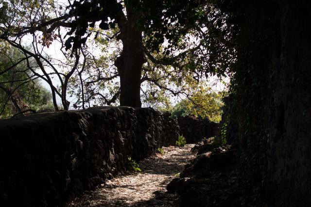 Sentiero lungo il percorso Acquegrandi