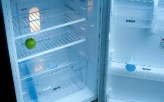 La spesa degli italiani per riempire il frigorifero al rientro dalle vacanze