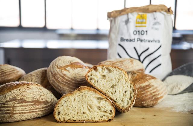 Il Miscuglio di grano evolutivo è diventato la farina Petra Evolutiva...