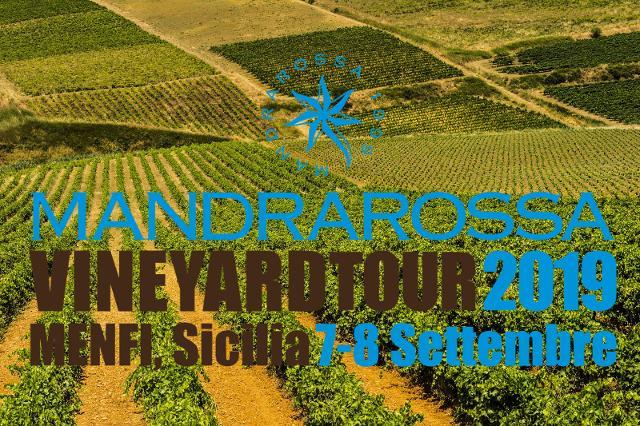 Mandrarossa Vineyard Tour 2019