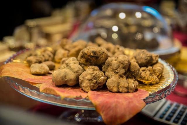Castelbuono presente a FICO Eataly World per  ''L'Italia del tartufo''