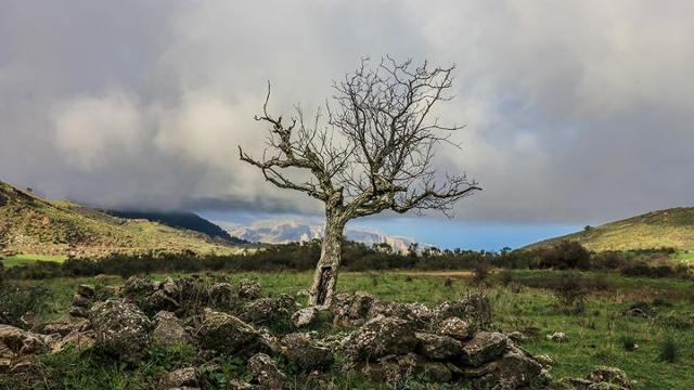Paesaggio sul monte San Calogero
