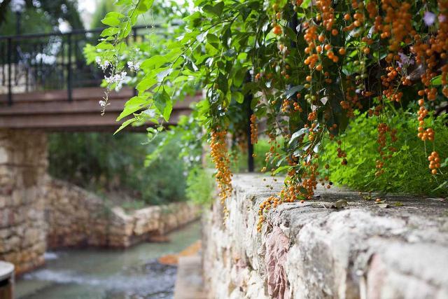 Terme Acqua Pia di Montevago