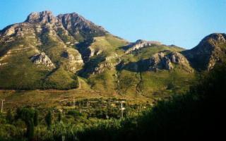 In Sicilia, nel 2020, sono stati scoperti quattro nuovi insetti