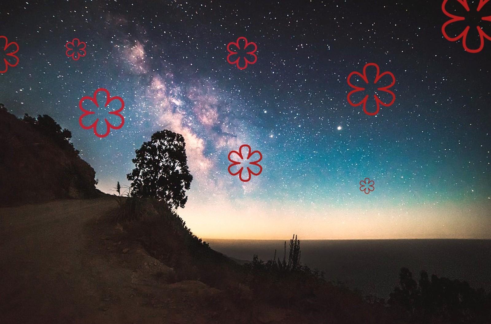 Armonia E Benessere Bagheria nel cielo del gusto siciliano brillano due nuove stelle
