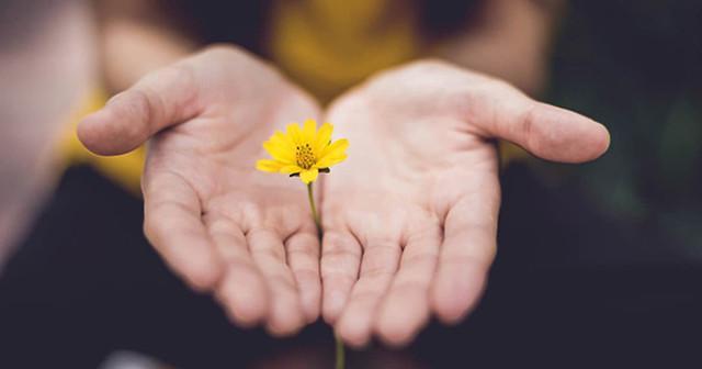 Praticate gentilezza a casaccio e atti di bellezza privi di senso...