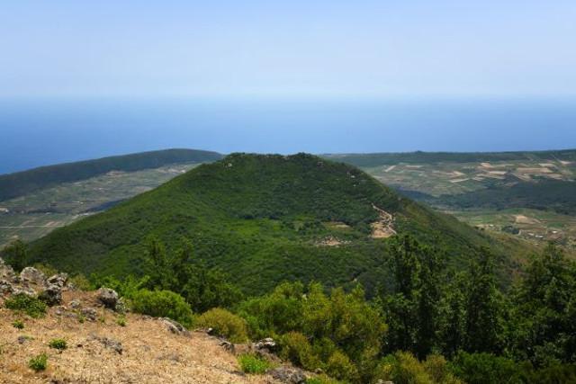 Grande successo per il progetto ''10.000 Alberi per Pantelleria''