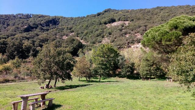 Area attrezzata nella Riserva di Monte Altesina - ph www.sicilywalking.com